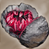 Geode rouge.png